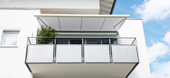 Erhardt J Metzger Fenster T Ren